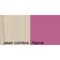 Barevné provedení - jasan coimbra / fialová