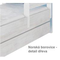 Norská borovice - detail