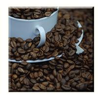 Obraz na plátně 30x30cm COFFEE BEANS - vzor 20