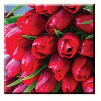 Obraz na plátně 30x30cm RED TUPIL - vzor 35