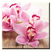 Obraz na plátně 30x30cm PINK FLOWER - vzor 39