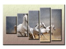 PĚTIDÍLNÝ OBRAZ na plátně HORSE - vzor 43