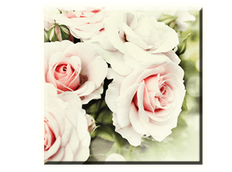 Obraz na plátně 30x30cm WHITE FLOWER - vzor 37