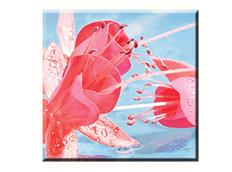 Obraz na plátně 30x30cm KVĚTINA - vzor 41
