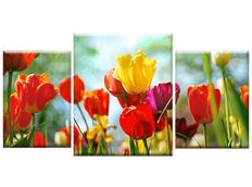 TŘÍDÍLNÝ OBRAZ na plátně FLOWERS - vzor65