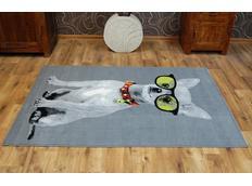 Dětský koberec CRAZY DOG - šedý
