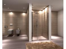 Sprchové dveře MULTI SPACE 100 cm