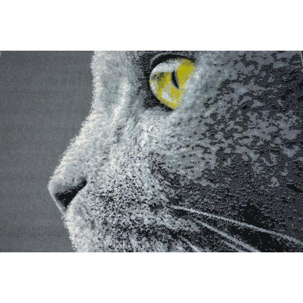 Moderní koberec Kočka
