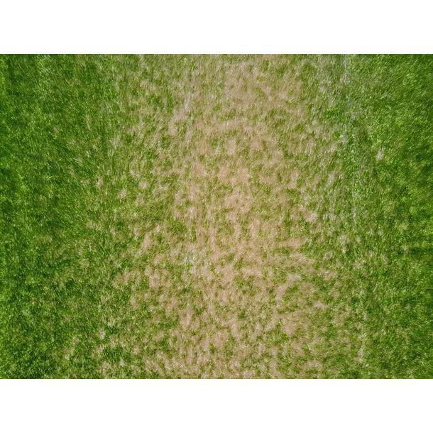 Kusový koberec SHAGGY TOP - zeleno-béžový