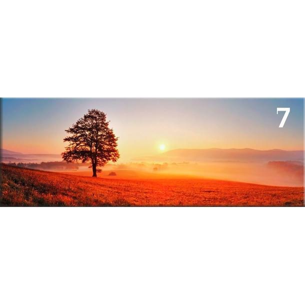 Obraz na plátně PANORAMA TREE -  vzor 7