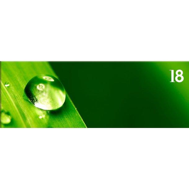 Obraz na plátně PANORAMA DEW -  vzor 18