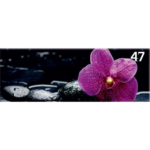 Obraz na plátně PANORAMA FLOWER -  vzor 47