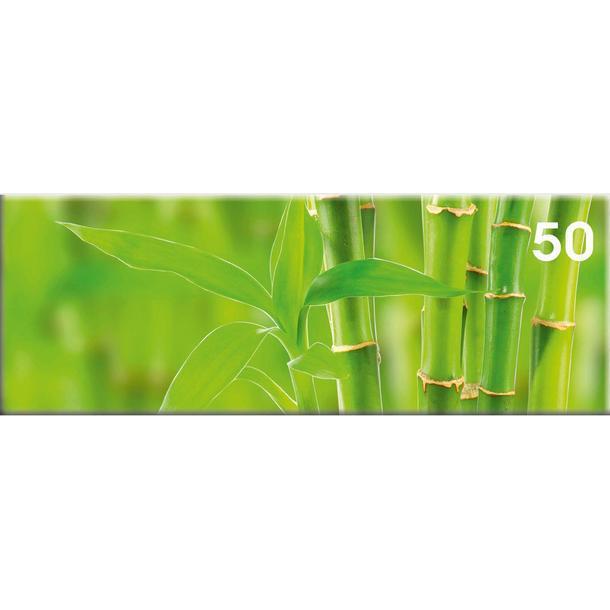 Obraz na plátně PANORAMA BAMBUS -  vzor 50