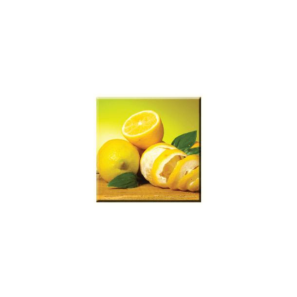 Obraz na plátně 30x30cm CITRON - vzor 2