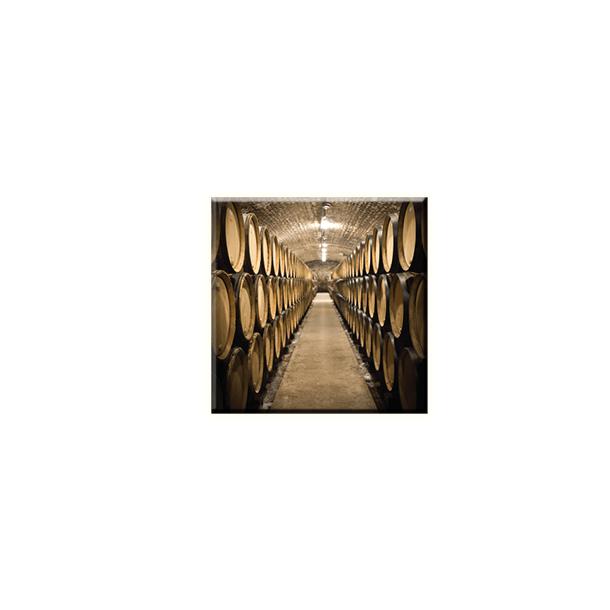 Obraz na plátně 30x30cm WINE BARREL - vzor 9