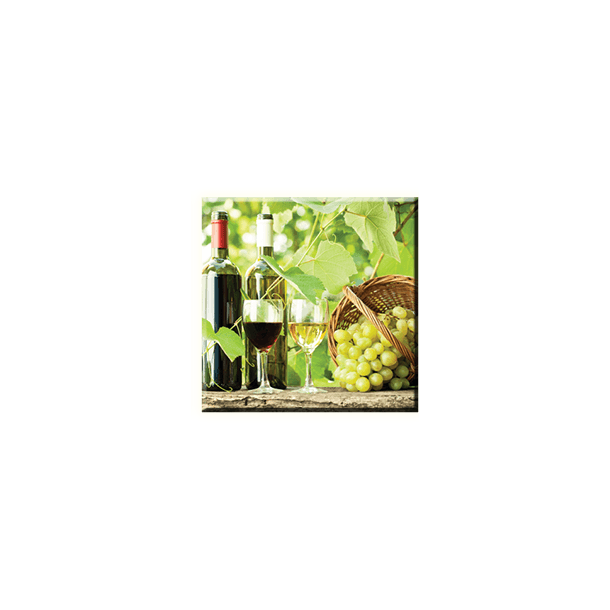 Obraz na plátně 30x30cm VÍNO - vzor 11