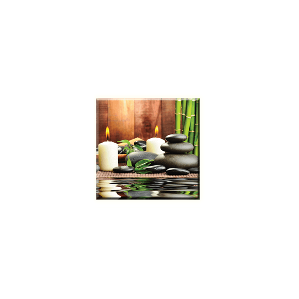 Obraz na plátně 30x30cm ROMANTIC - vzor 31