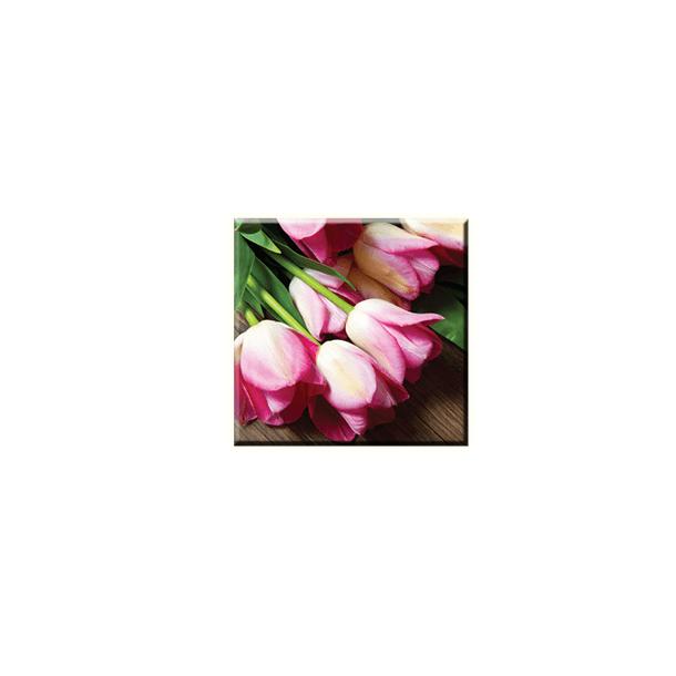 Obraz na plátně 30x30cm TULIP - vzor 33