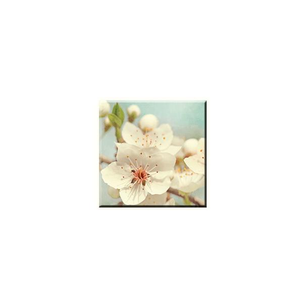 Obraz na plátně 30x30cm BLOOM - vzor 38