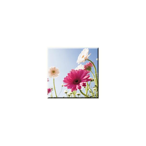 Obraz na plátně 30x30cm SWEET FLOWER - vzor 40