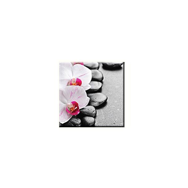 Obraz na plátně 30x30cm ORCHIDEJ - vzor 42