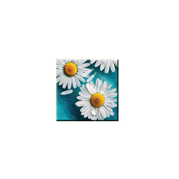 Obraz na plátně 30x30cm CAMOMILE - vzor 44