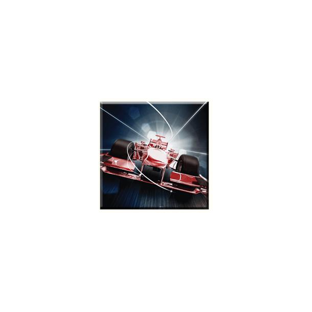 Obraz na plátně 30x30cm FORMULE - vzor 47