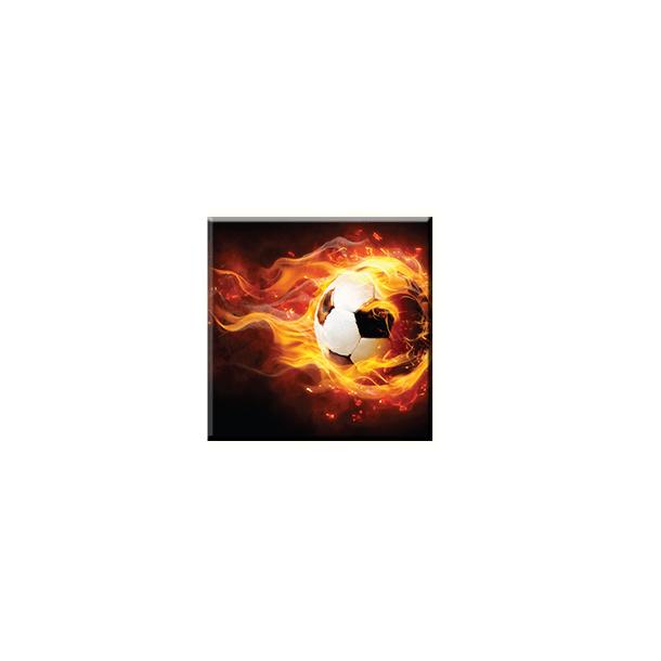 Obraz na plátně 30x30cm FAIR BALL - vzor 59