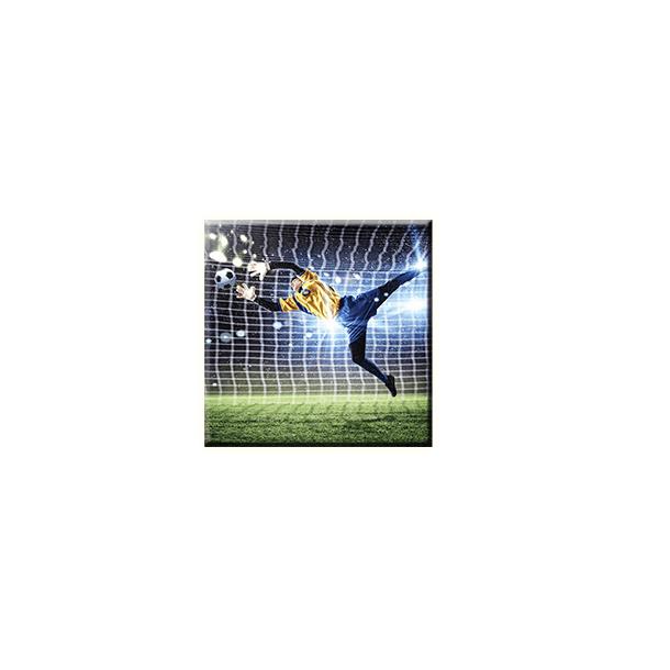 Obraz na plátně 30x30cm GOALMAN - vzor 60