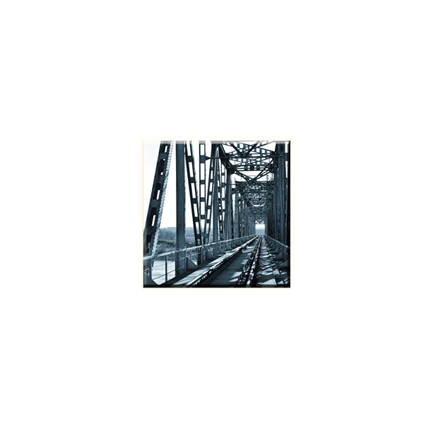 Obraz na plátně 30x30cm BRIDGE - vzor 80
