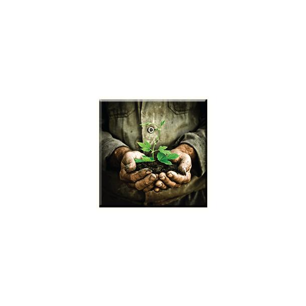 Obraz na plátně 30x30cm PLANT - vzor 91
