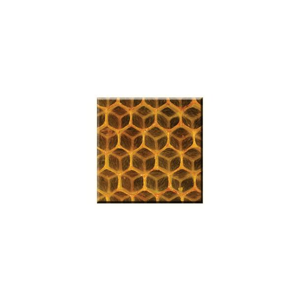 Obraz na plátně 30x30cm HONEY - vzor 92