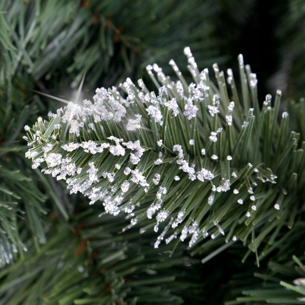 Vánoční stromek - diamantová borovice na dřevěném kmeni 180 cm
